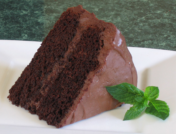Robin BD Choc Cake Slice 044a
