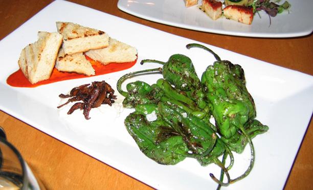 Plant appetizers 006a
