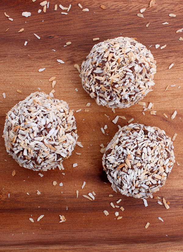 Power Ball Energy Bites from The Nut Butter Cookbook by Robin Robertson